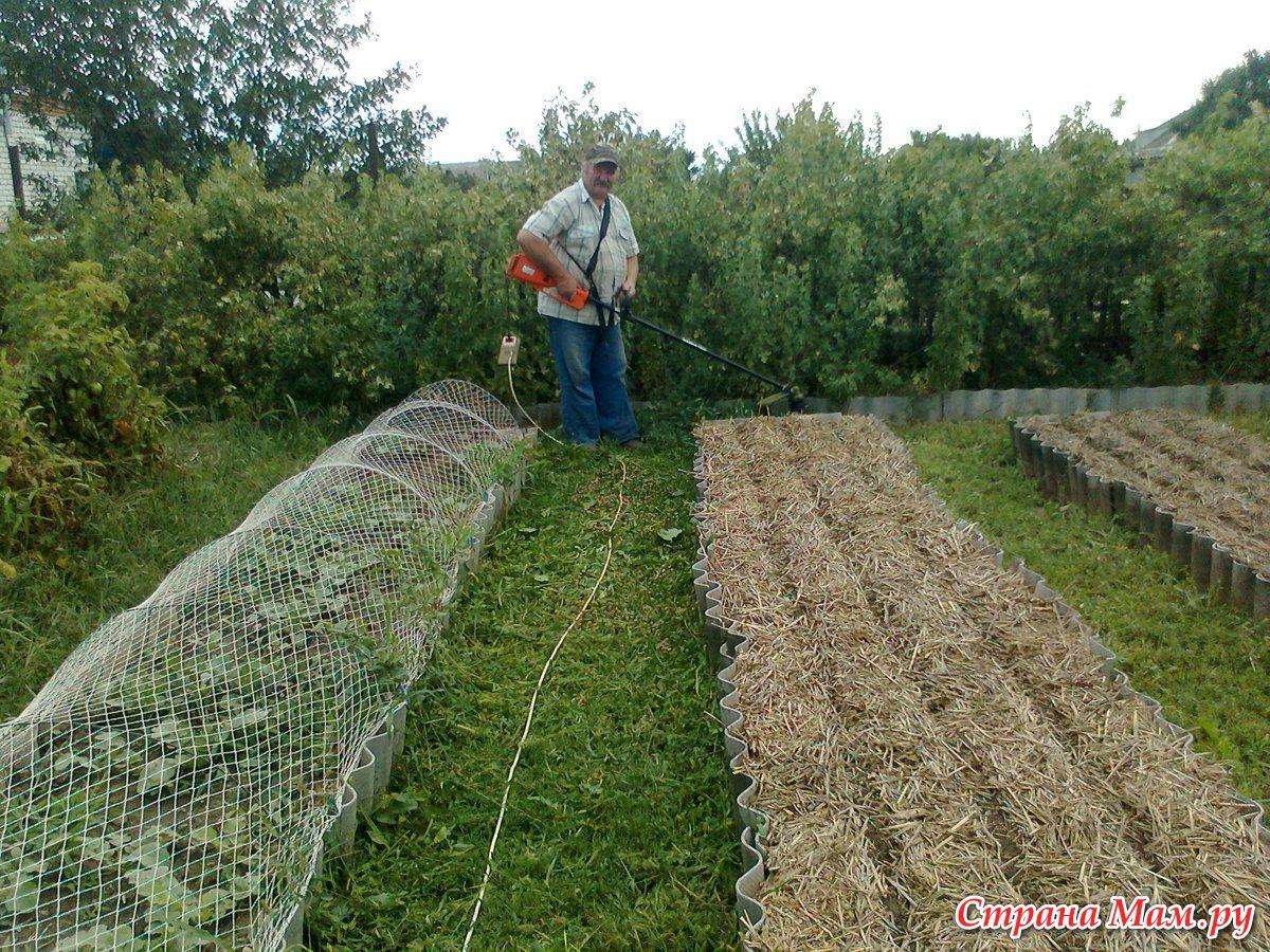 Как сделать чтоб трава не росла трава