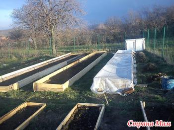 И опять узкие грядки | Сад на NanoPics: http://garden-pictures.nanopics.ru/view/16850629