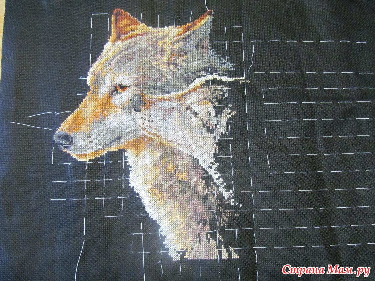 Вышивка поцелуй волка примета 71