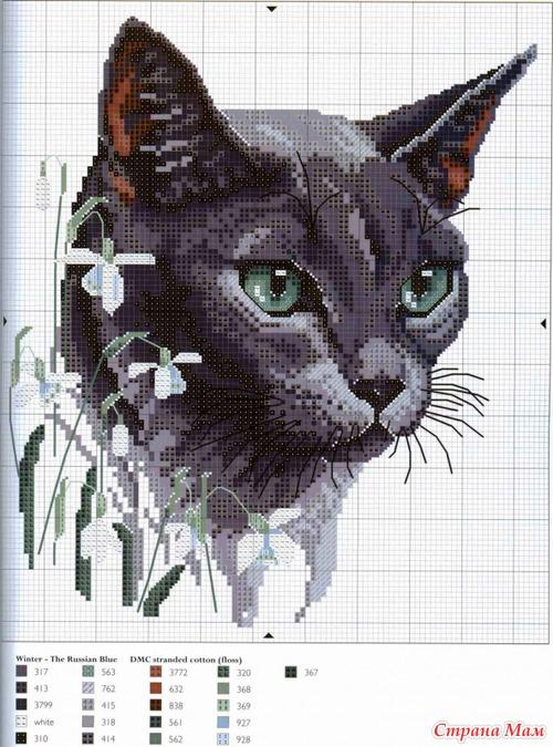 Вышивка крестом котики