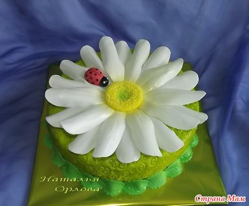 Торт в виде ромашки фото