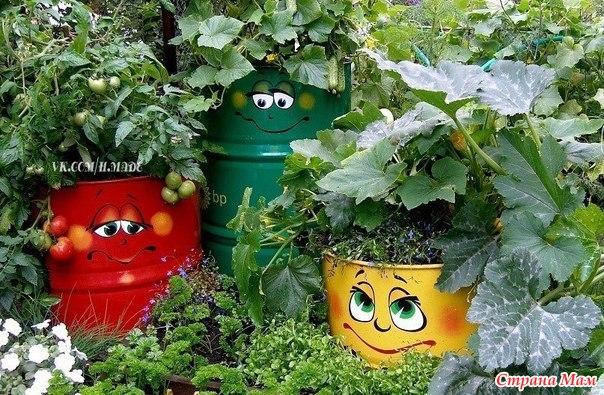 Как украсить огород  в фото