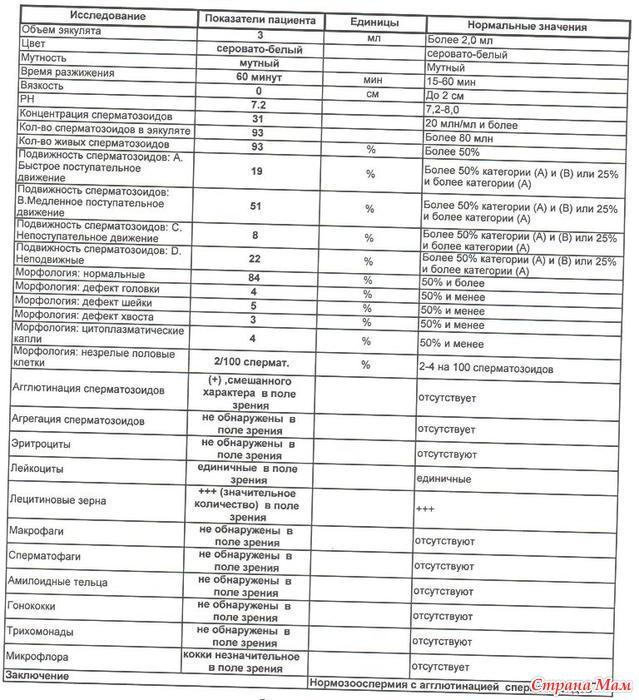 chto-takoe-agregatsiya-i-agglyutinatsiya-spermatozoidov