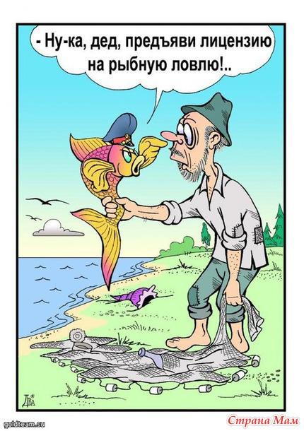 анекдот поймал рыбак золотую рыбку