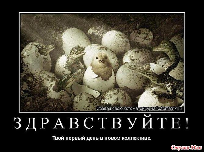 http://st.stranamam.ru/data/cache/2013nov/18/48/10120642_70637.jpg