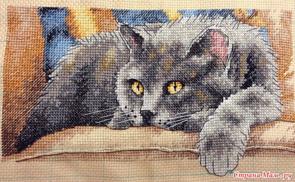 Вышивка крестиком кот макс 72