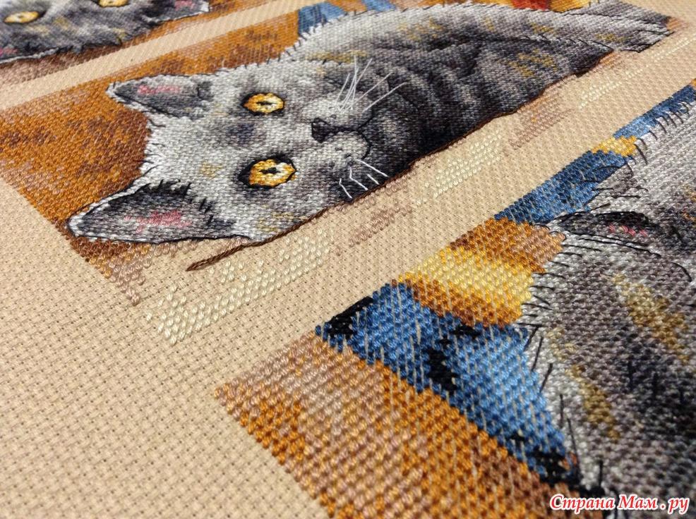 Вышивка крестиком кот макс 42