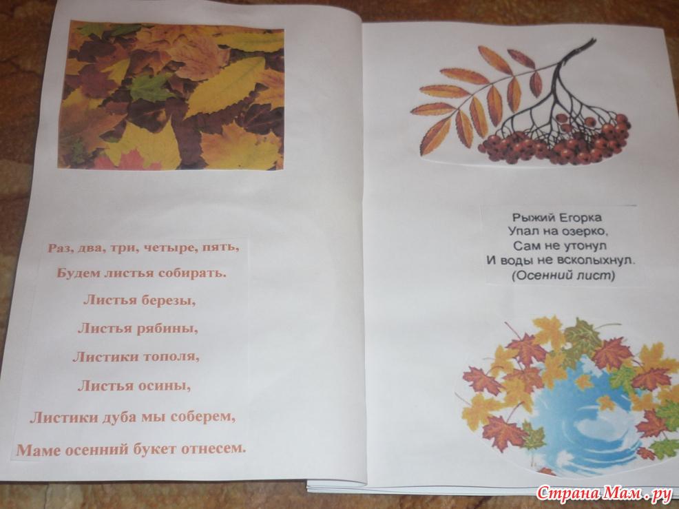 Книжка в школу видео - Зеленый дом