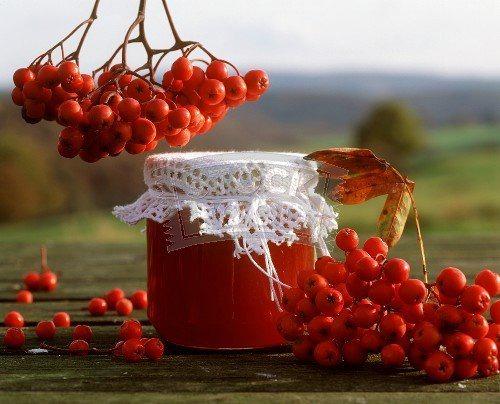 рецепт варенья из красной рябины с антоновкой
