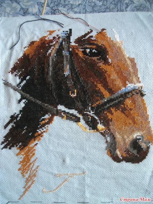 27. 155 Лошадь с маками