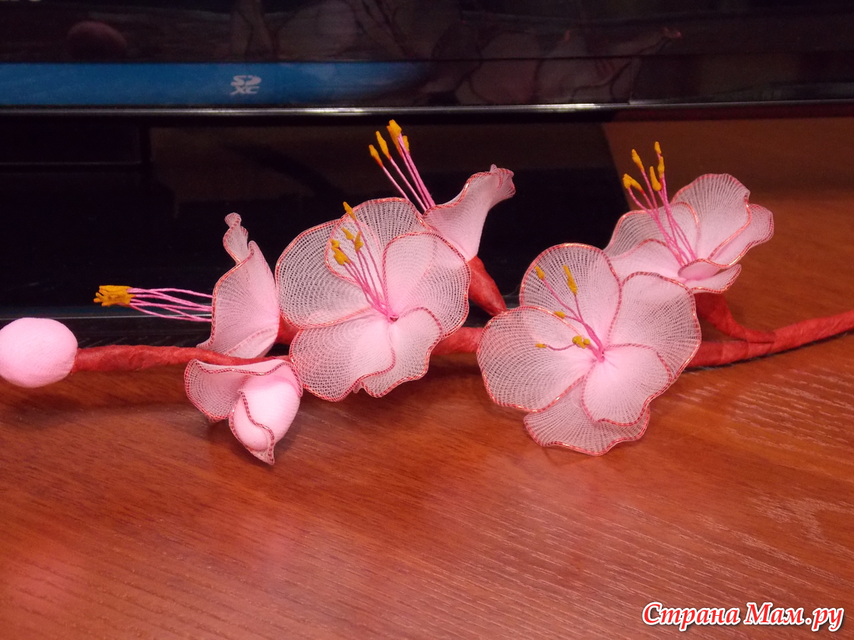 Фото стрижек для лопоухих девушек