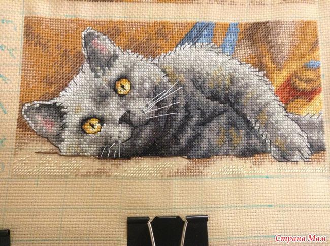 Вышивка крестиком кот макс 54