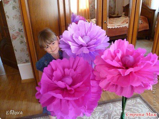 Мастер класс большие цветы из бумаги на стену своими руками
