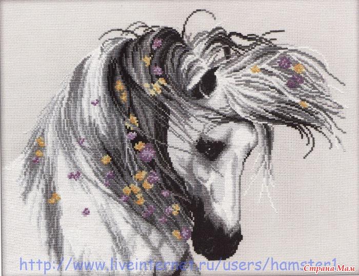 Вышивка лошади картинки