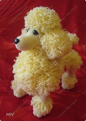 пудель-марионетка от Леночки -ЯМИ: фотография в альбоме игрушки от Леночки ЯМИ - Страна Мам