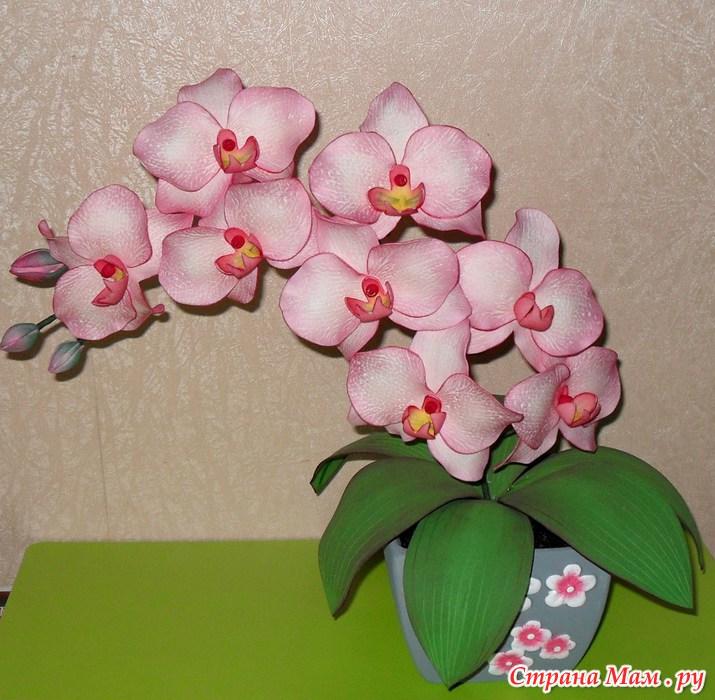 Цветы орхидеи из фоамирана мастер класс с пошаговым фото