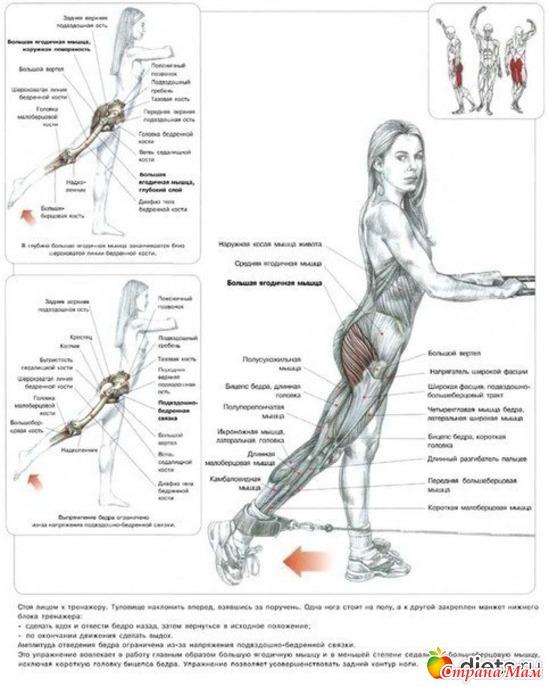 для упражнения статические похудения-1