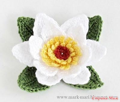 изячный цветок лотоса