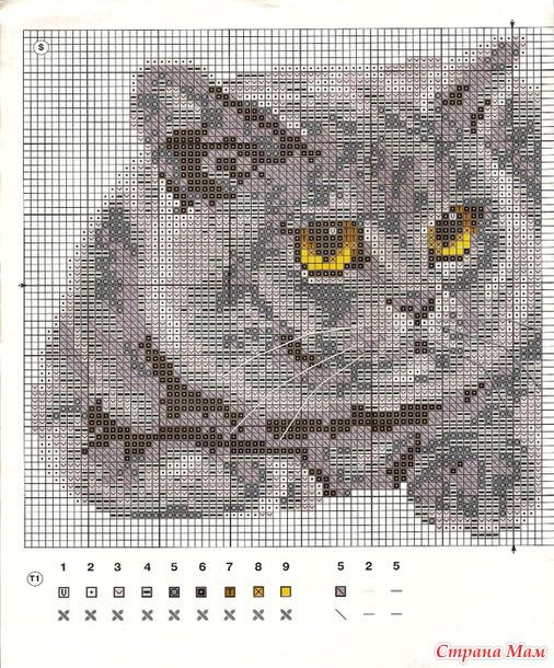 Вышивка крестиком кота