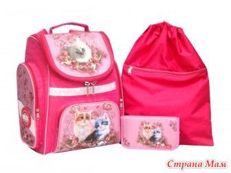 Школьные рюкзаки ранцы пеналы сумки для обуви рюкзак salewa urban 22 купить