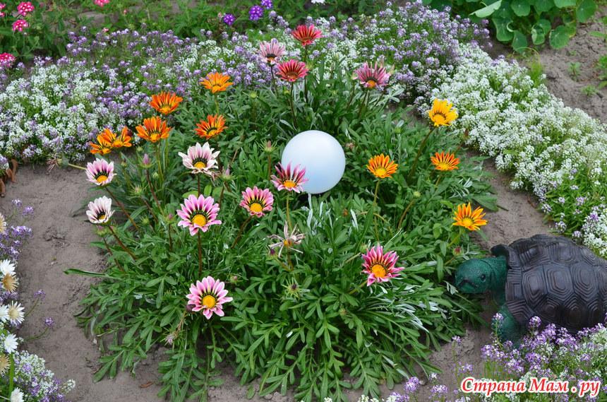 Гацания цветов в клумбе