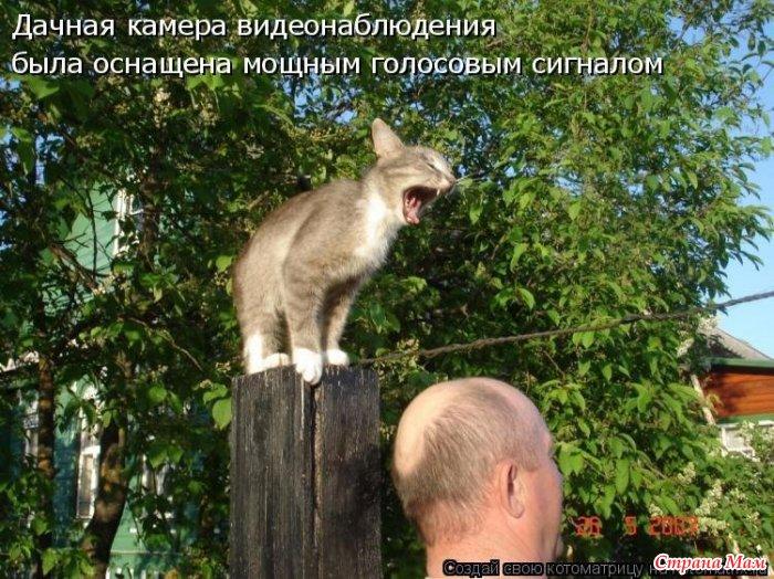 http://st.stranamam.ru/data/cache/2014mar/16/23/11450812_88055.jpg