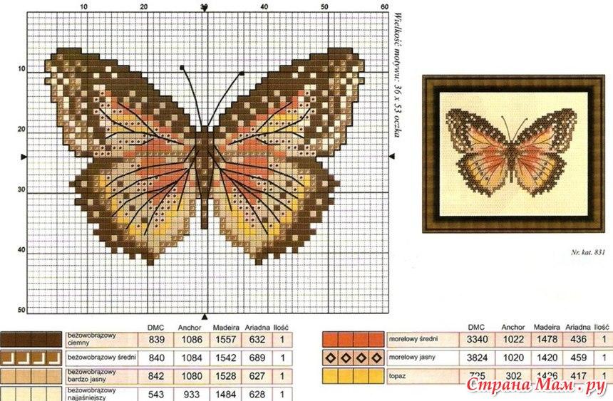 Вышивка крестом схемы скачать бесплатно-бабочки