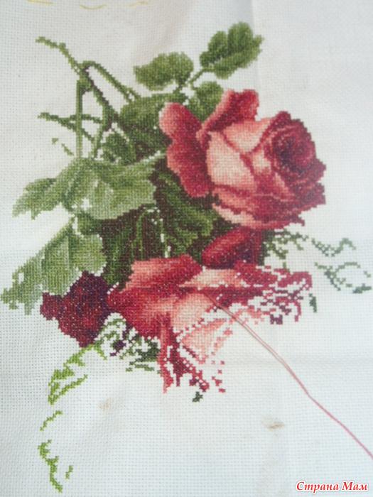 Красные розы и виноград вышивка