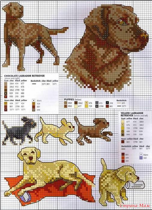 Ещё больше схем вы найдёте в статьях про вышивка цветов крестиком и вышивку котов