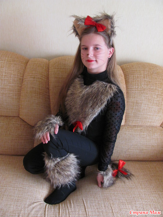 картинки кошек с костюмами