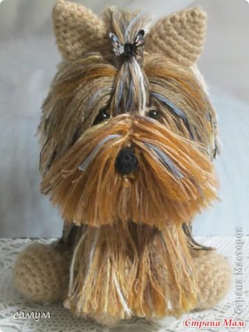 Собака йоркширский терьер крючком