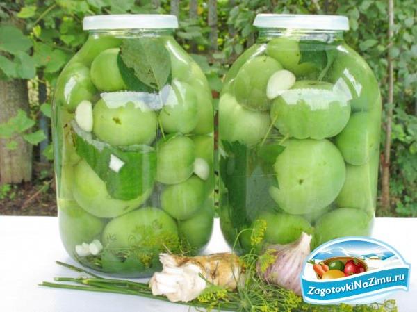 Рецепт засолки зеленых помидор фото