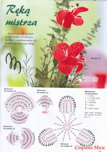 Цветы крючком орхидеи схемы