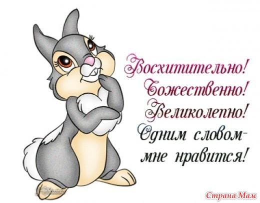 http://st.stranamam.ru/data/cache/2015dec/14/15/18024247_20306.jpg