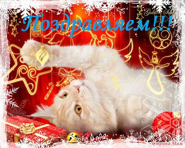 Новогодние поздравления котов