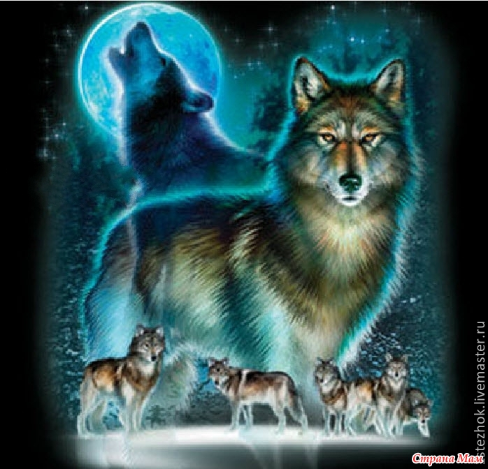 Алмазная вышивка фото волков