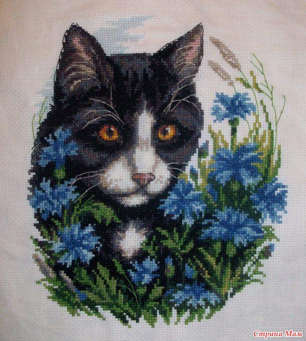 """*КЛАРТ """"Коты в цветах"""