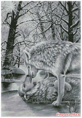 Вот эти волки?