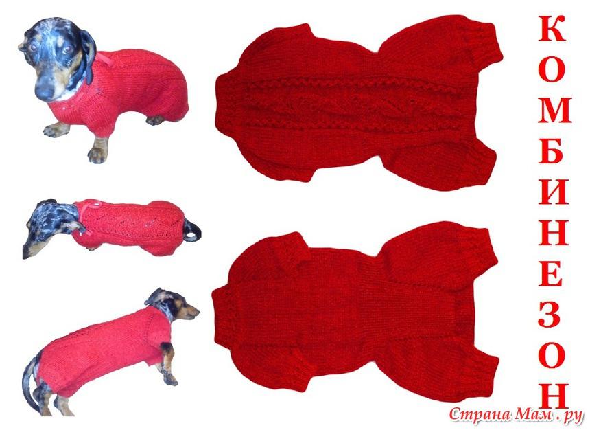 Схема вязания костюма для таксы 13