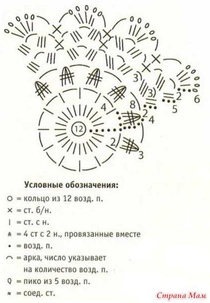 Описание схемы цветка.