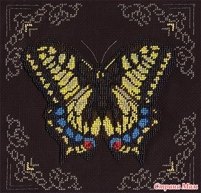 *Бабочки от Кларт