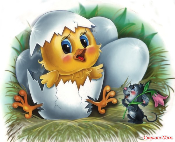 Цыпленок в открытке