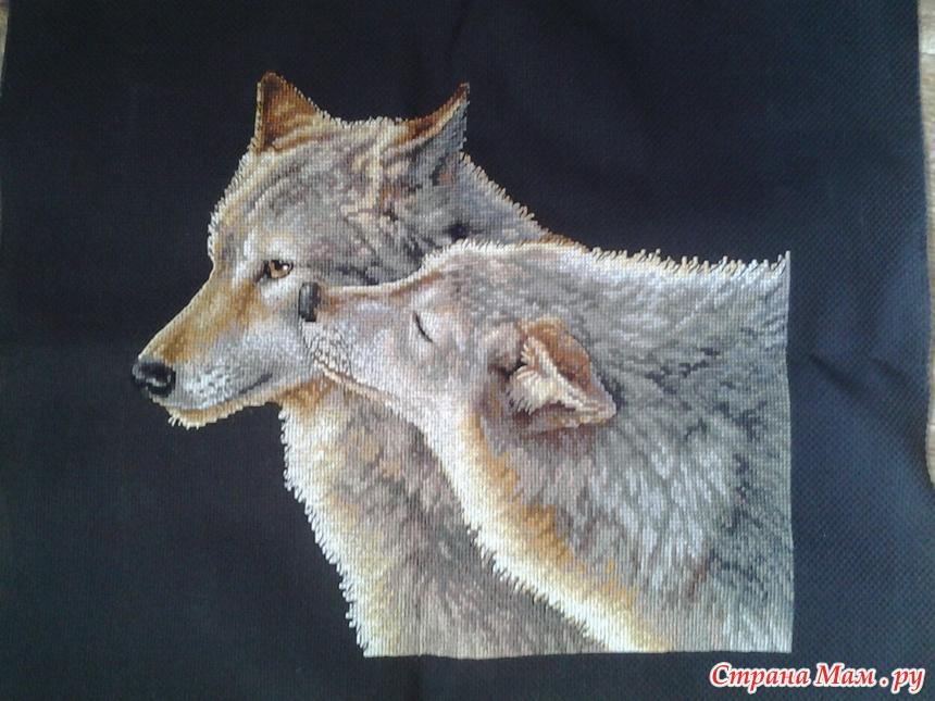 Поцелуй волка вышивка