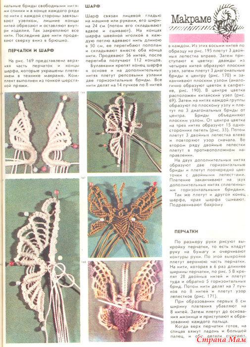 Бабочки-красавицы)