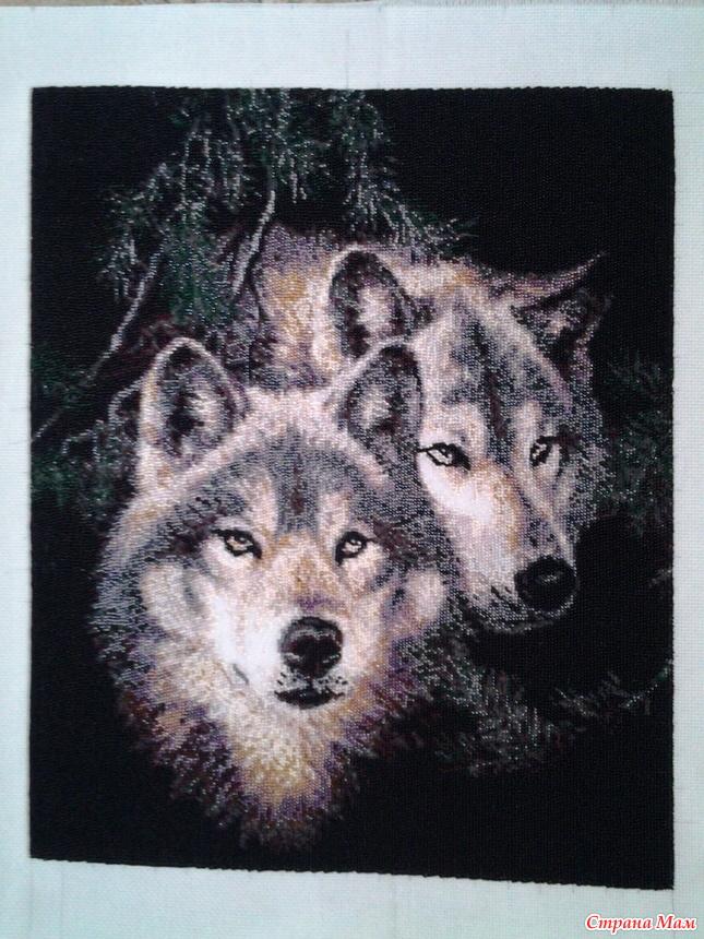 Вышивка поцелуй волка примета 25