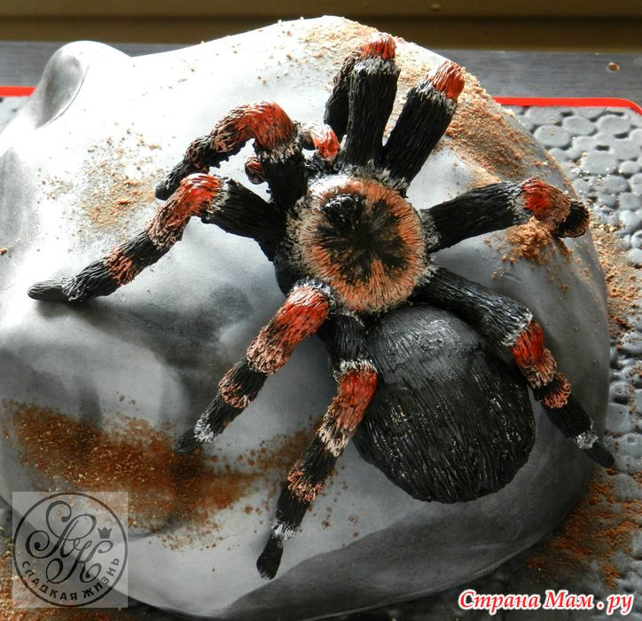 Как сделать паук для торта 143