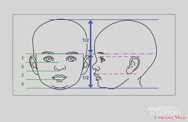 ОНЛАЙН по рисованию лица 2 ЧАСТЬ
