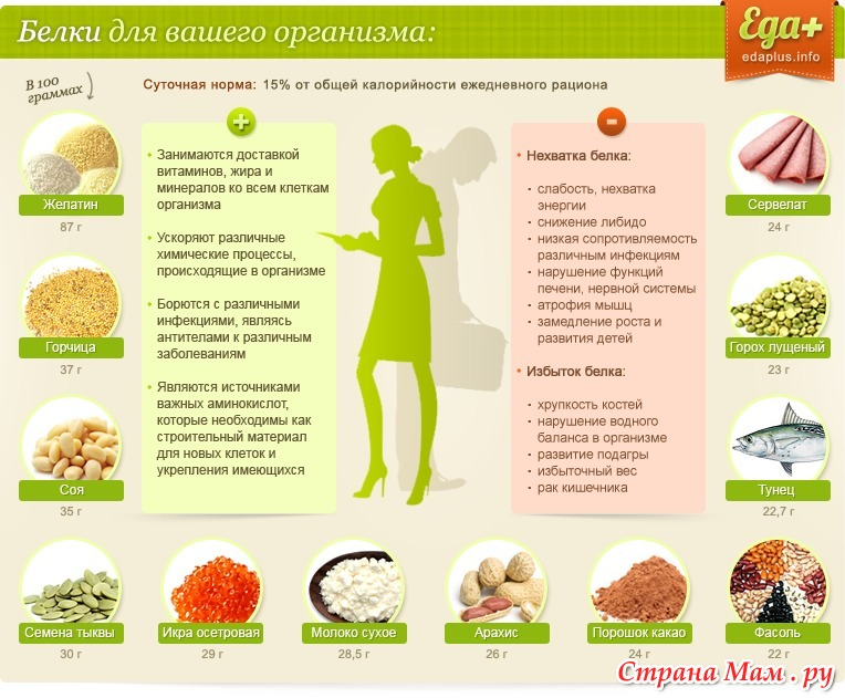 Польза белка для беременных