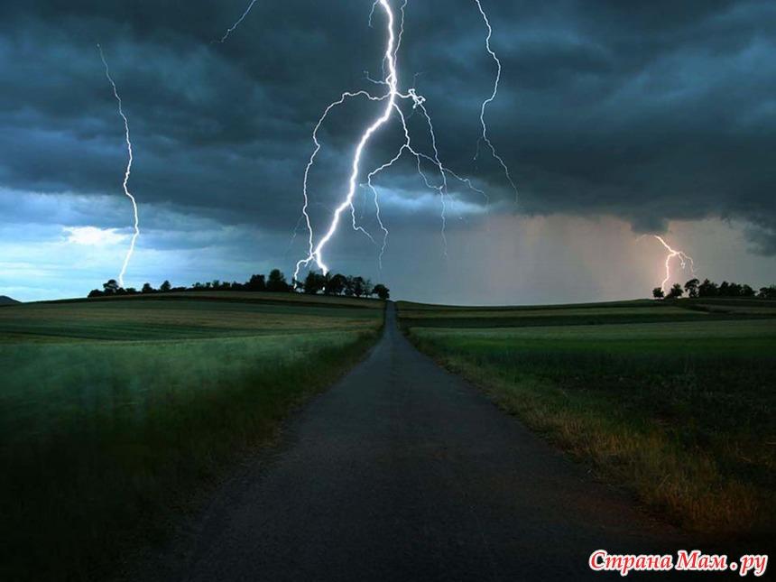 Високосный год картинки природы