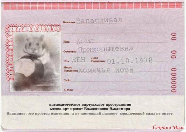 Как можно сделать паспорт для игры